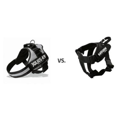 K9crew-vs-Julius-K9